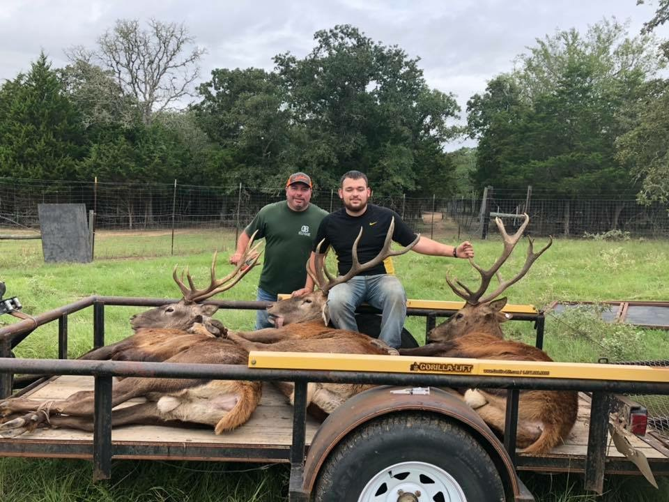 Home: StockYourRanch com - Double B Exotics - Texas Exotic